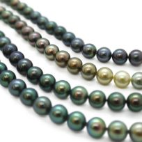 Les Merveilles du Pacifique : Quand la perle se réinvente